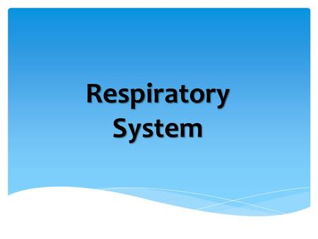 Respiratory System. What are some of the organs that make up our respiratory system? Respiratory System.