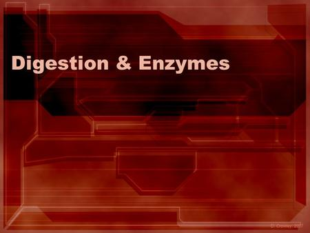 Digestion & Enzymes D. Crowley, 2007. Digestion & Enzymes To revise the digestive system, and the role of enzymes.