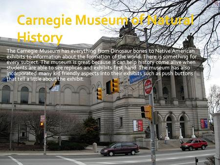 The Carnegie Museum has everything from Dinosaur bones to Native American exhibits to information about the formation of the world. There is something.
