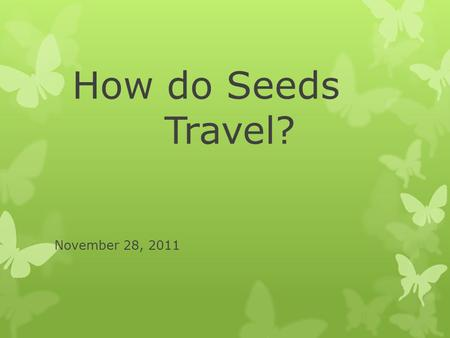 How do Seeds Travel? November 28, 2011.