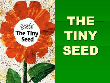 THE TINY SEED. VOCABULARY THRIVE: When living things thrive they grow healthy and strong.