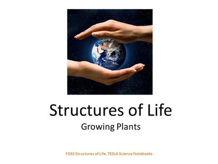 Structures of Life Growing Plants FOSS Structures of Life, TESLA Science Notebooks.