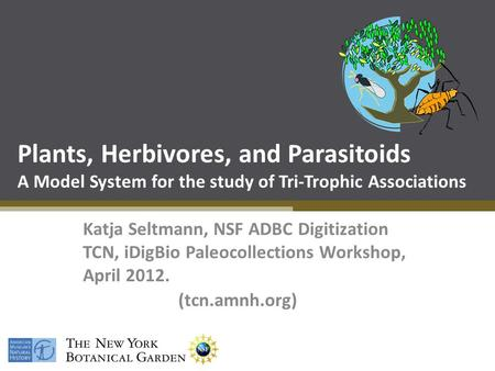 Plants, Herbivores, and Parasitoids A Model System for the study of Tri-Trophic Associations Katja Seltmann, NSF ADBC Digitization TCN, iDigBio Paleocollections.