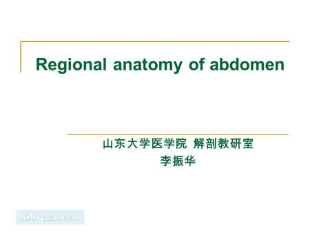 Regional anatomy of abdomen