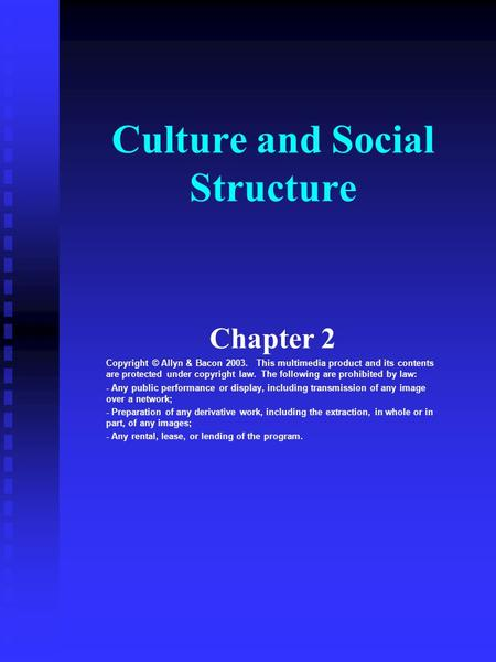Culture and Social Structure Chapter 2 Copyright © Allyn & Bacon 2003. This multimedia product and its contents are protected under copyright law. The.