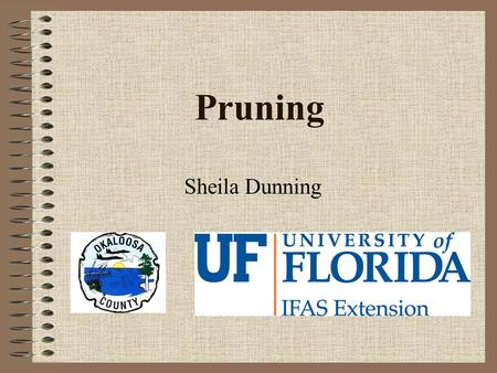 Pruning Sheila Dunning. What is Pruning? Removal of plant parts –Shoots, branches, fronds, flowers Improve health Control growth Influence flowering &