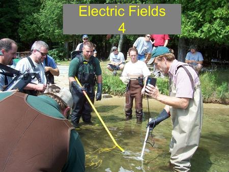 Electric Fields 4. Overview Session 4: covers electricity in water which includes electric field concepts/field form terms (e.g. voltage gradient, power.