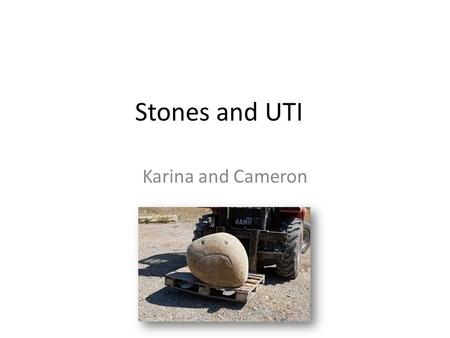 Stones and UTI Karina and Cameron.