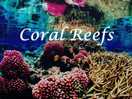 Coral Reefs. What is a coral reef? Ecosystem Community of living organisms Exist since millions of years The reefs that we see today had to grow for around.
