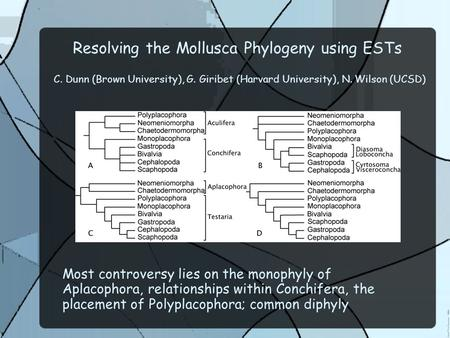 Resolving the Mollusca Phylogeny using ESTs C. Dunn (Brown University), G. Giribet (Harvard University), N. Wilson (UCSD) Most controversy lies on the.