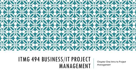 ITMG 494 business/it project management