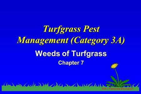 MSU Pesticide Education Turfgrass Pest Management (Category 3A) Weeds of Turfgrass Chapter 7.