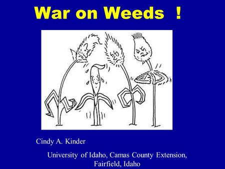 War on Weeds ! Cindy A. Kinder University of Idaho, Camas County Extension, Fairfield, Idaho.