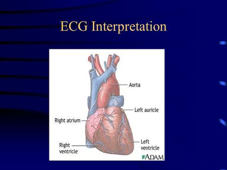 ECG Interpretation.