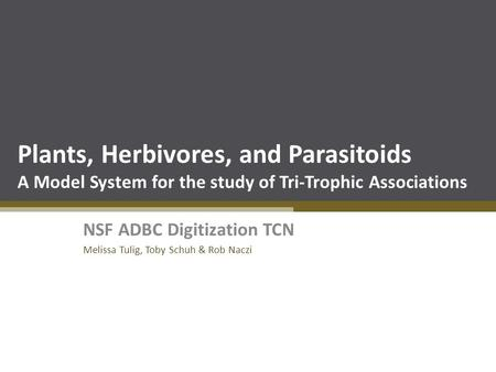 Plants, Herbivores, and Parasitoids A Model System for the study of Tri-Trophic Associations NSF ADBC Digitization TCN Melissa Tulig, Toby Schuh & Rob.