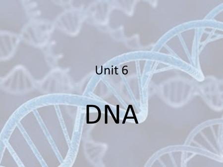 Unit 6 DNA. Griffith Experiment DNA Structure DNA is a polymer made of monomers called nucleotides Each nucleotide is made of: – A phosphate group –