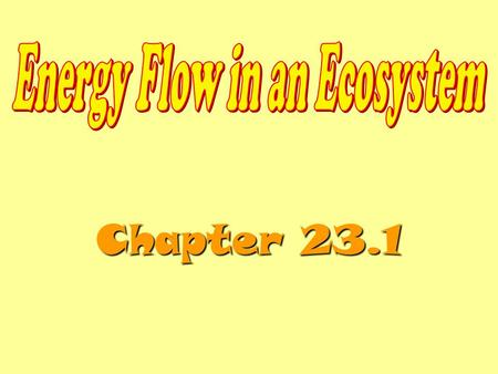 Chapter 23.1. Energy Roles An organism's energy role in an ecosystem may be that of a producer, consumer, or decomposer. An organism's energy role is.