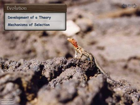 Development of a Theory Development of a Theory Mechanisms of Selection Mechanisms of Selection author unknown address unknown accessed unknown.