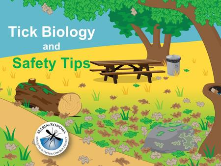 Safety Tips Tick Biology and. Ticks need blood to grow and reproduce.