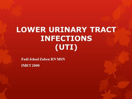 LOWER URINARY TRACT INFECTIONS (UTI)