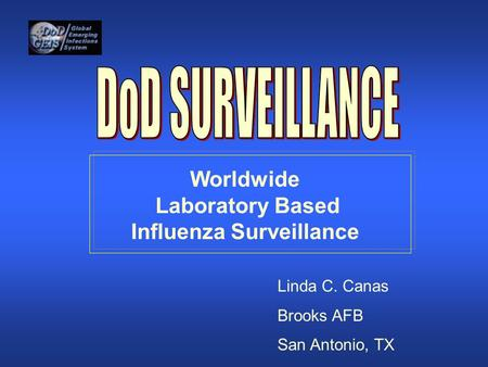 Worldwide Laboratory Based Influenza Surveillance Linda C. Canas Brooks AFB San Antonio, TX.