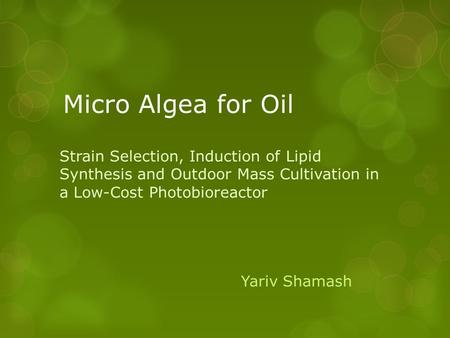 Micro Algea for Oil Strain Selection, Induction of Lipid Synthesis and Outdoor Mass Cultivation in a Low-Cost Photobioreactor Yariv Shamash.
