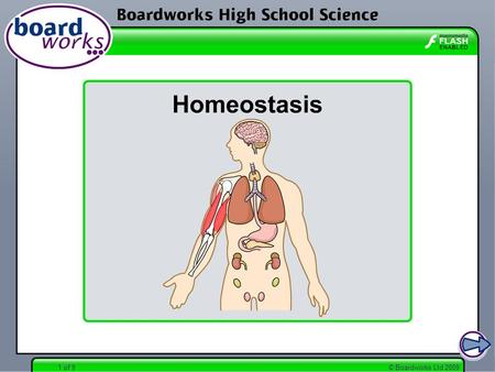 © Boardworks Ltd 20091 of 9. © Boardworks Ltd 20092 of 9 What is homeostasis? Remember, one of the Characteristics of Life is homeostasis. Many of the.