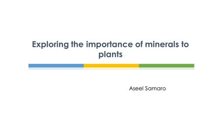 Aseel Samaro Exploring the importance of minerals to plants.