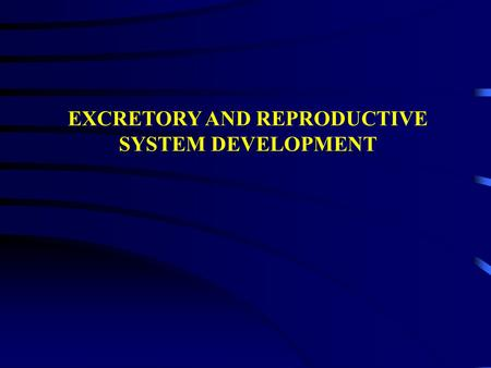 EXCRETORY AND REPRODUCTIVE