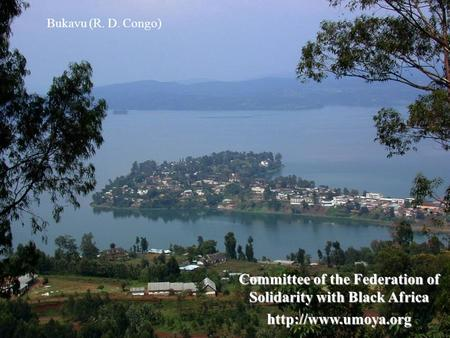Committee of the Federation of Solidarity with Black Africa  Bukavu (R. D. Congo)