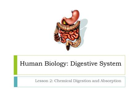Human Biology: Digestive System Lesson 2: Chemical Digestion and Absorption.