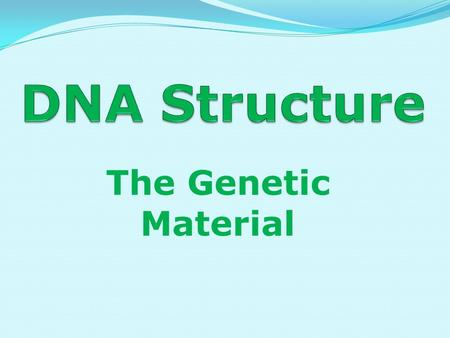DNA Structure The Genetic Material.