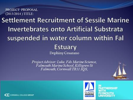 Dephiny Cesarano Project Advisor: Luke. Fds Marine Science, Falmouth Marine School, Killigrew St Falmouth, Cornwall TR11 3QS, PROJECT PROPOSAL (2013/2014.