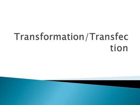 Transformation/Transfection