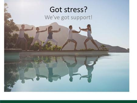 Got stress? We've got support!. Stress Is Everywhere Everyone has stress―now more than ever! Environmental stress Physical stress Emotional stress.