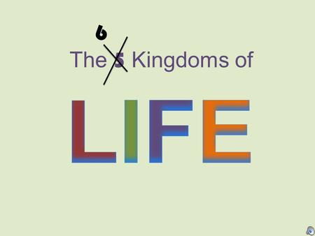 6 The 5 Kingdoms of LIFE.