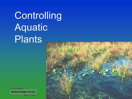 Controlling Aquatic Plants. When left uncontrolled, aquatic plants Impair recreational uses Cause foul odors and bad taste to drinking water Cause fish.