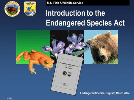 U.S. Fish & Wildlife Service Slide 1 Introduction to the Endangered Species Act Endangered Species Program, March 2004.