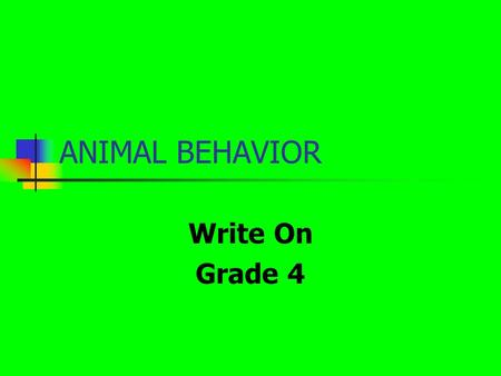 ANIMAL BEHAVIOR Write On Grade 4. Learner Expectation Content Standard: 2.0 The student will investigate how living things interact with one another and.