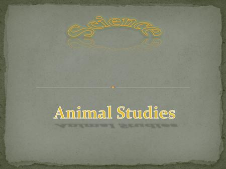 Science Animal Studies.