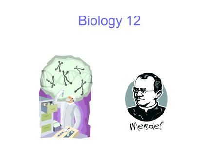 Biology 12. Inheritance Organisms inherit characteristics from their parents Characteristics are controlled by DNA In sexual reproduction, organisms inherit.