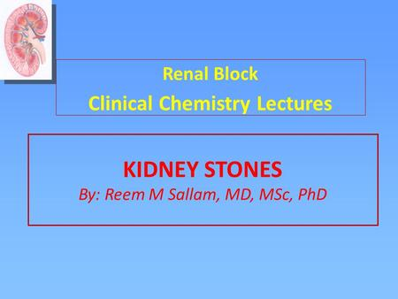 KIDNEY STONES By: Reem M Sallam, MD, MSc, PhD Renal Block Clinical Chemistry Lectures.