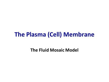 The Plasma (Cell) Membrane The Fluid Mosaic Model.