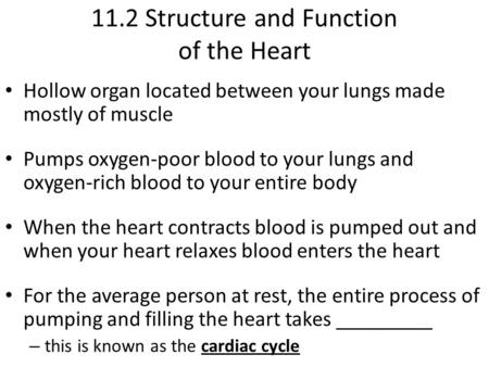11.2 Structure and Function of the Heart