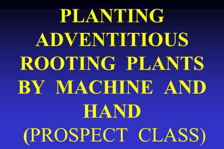 PLANTING ADVENTITIOUS ROOTING PLANTS BY MACHINE AND HAND (PROSPECT CLASS)