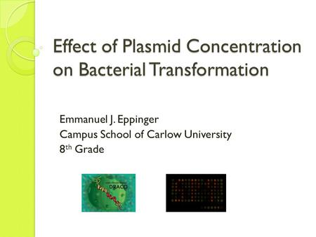 bacterial plasmid transformation and isolation Transformation and plasmid isolation  expression cassette (including a  promoter and a gene-termination or poly(a) signal) bacterial origin of replication  (ori).