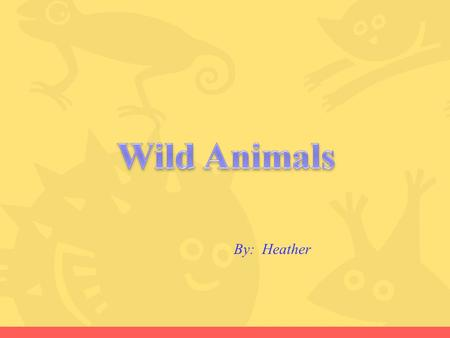 Wild Animals By: Heather.