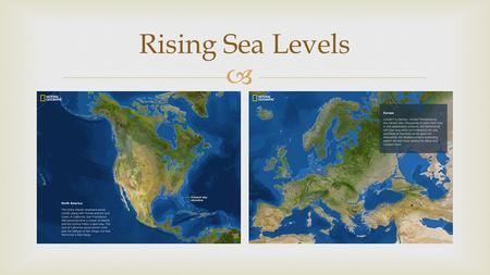  Rising Sea Levels.    Several food chains connected together  Shows many different paths of how plants and animals are connected  Each level.