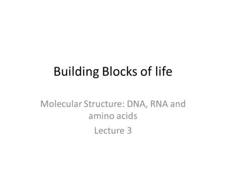 Building Blocks of life Molecular Structure: DNA, RNA and amino acids Lecture 3.