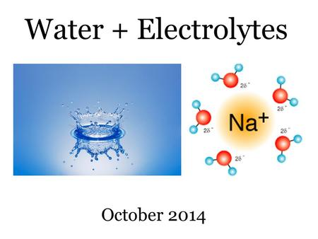 Water + Electrolytes October 2014. REMINDER These slides are supplementary notes to help you visualize important parts of the chalkboard lectures. They.